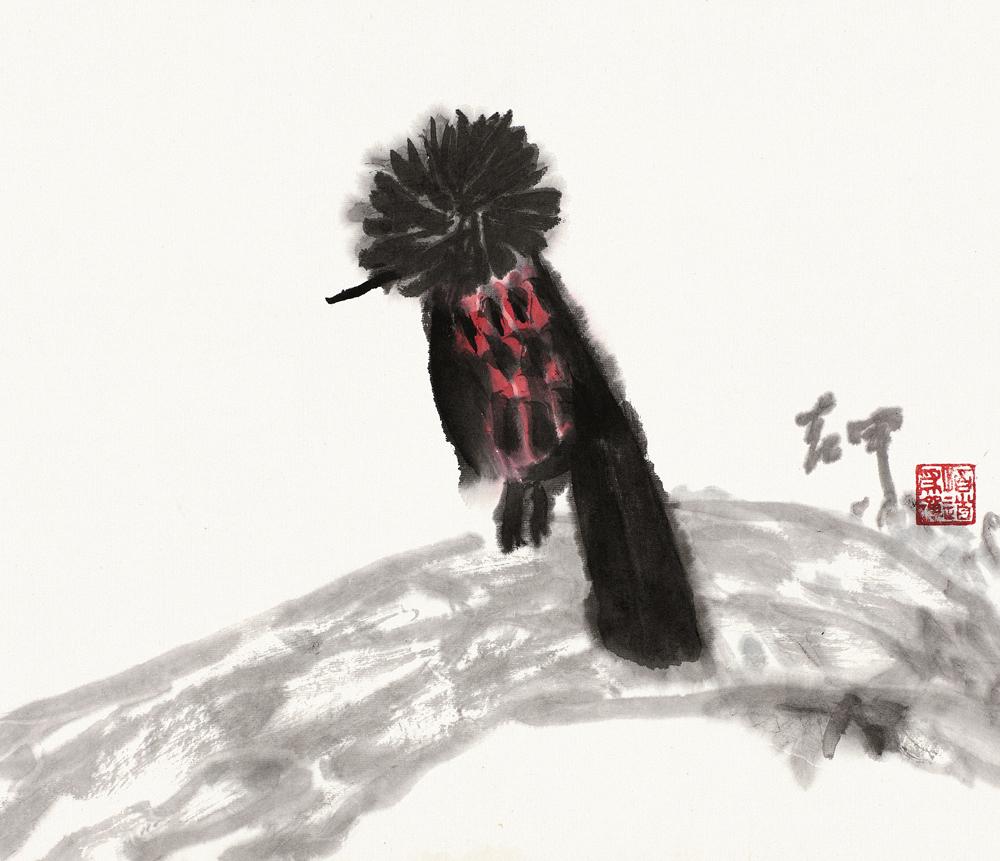 冠鱼狗(花豹钓)